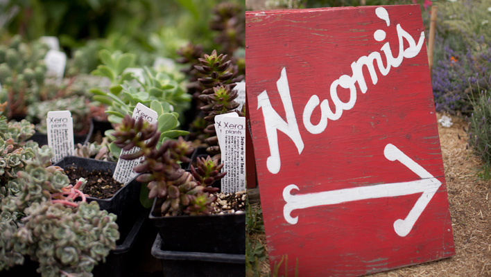 Naomi's Organic Farm Supply, Portland, Oregon
